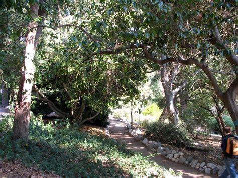 ucla botanical garden 6 local gardens for families to explore l a parent