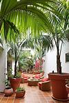Best 20+ Tropical patio ideas on Pinterest | Tropical tropical outdoor patio