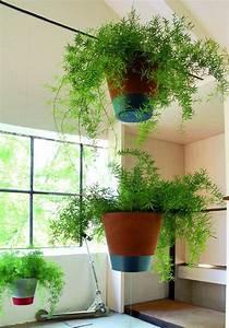 Suspension Pour Plante Interieur : familypot suspension jardinchic ~ Teatrodelosmanantiales.com Idées de Décoration