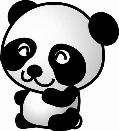 Panda Bear Animal Pixabay Graphic Vector