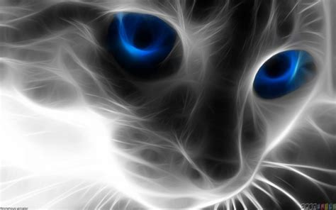 Zoo Wild Lights by Abstract Cat With Blue Eyes Wallpaper 17808 Open Walls