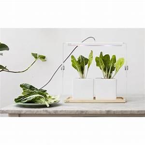 Jardiniere Interieur : lampe pour jardiniere d 39 interieur quadra ksl living ~ Melissatoandfro.com Idées de Décoration