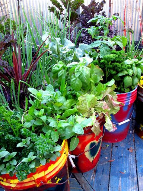 the best vegetables and herbs for your container garden hgtv