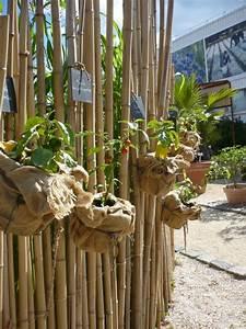 guide pour creer sa deco jardin avec bambou With deco jardin avec bambou