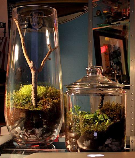 fabriquer un mini terrarium design forumbrico