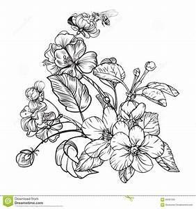 Image result for black and white flower illustration   Ink ...