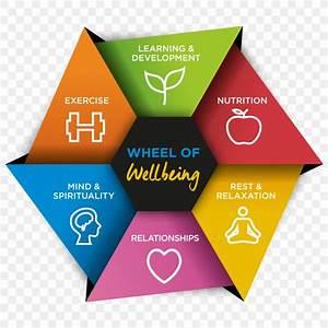 Lifestyle Wiring Diagram Understanding Mental Health  Png