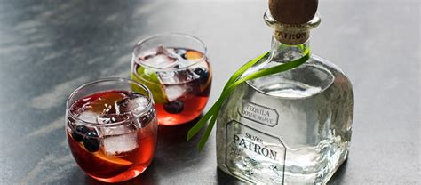 how to make tequila how to make patr 243 n peach sangria patr 243 n tequila
