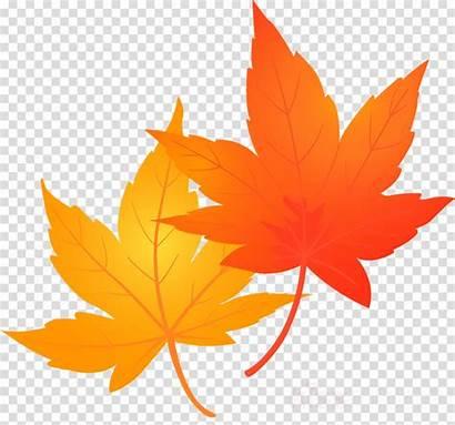 Leaves Fall Autumn Maple Leaf Clipart Clip