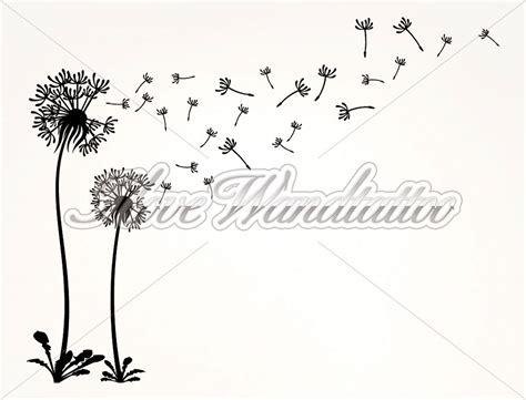wandtattoo pusteblume als florale wanddeko  love
