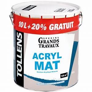 Peinture Bois Exterieur Tollens : peinture acrylique mat 10l 20 tollens peinture blanche ~ Dailycaller-alerts.com Idées de Décoration
