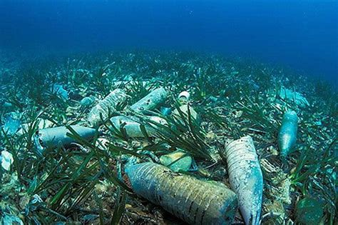 Plastic Pollution In The Great Lakes
