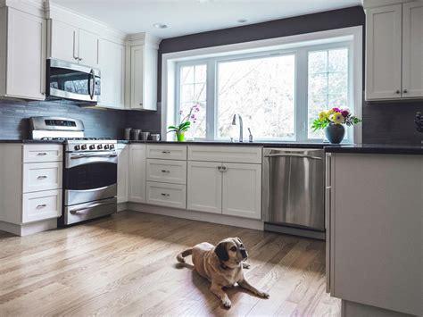 mainline kitchen design tips for a pet friendly home hgtv 3975