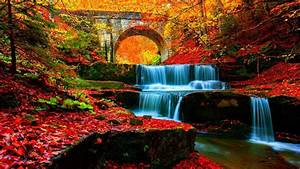 Waterfall, Stream, Between, Rock, With, Red, Leaves, And, Colorful, Trees, Covered, Forest, With, Bridge, Hd