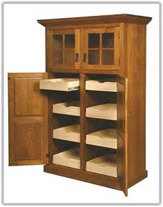 How To Build A Kitchen Pantry by Kitchen Pantry Storage Cabinet Home Design Ideas