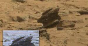Mars Anomalies Mars Curiosity Rover - May 25, 2013  UFO ...