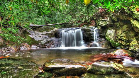 Forest Waterfall Desktop Background Hd Wallpapers 06739 2560x1600