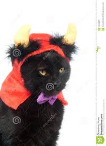 Black Cats with Devil Horns