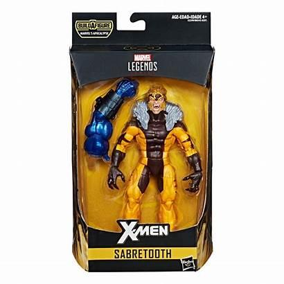 Marvel Legends Action Sabretooth Figure Apocalypse Wave