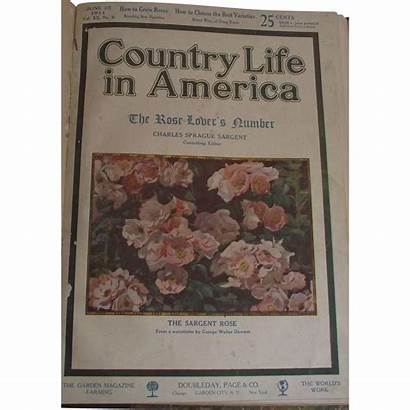 America Country 1911 Hard Paper