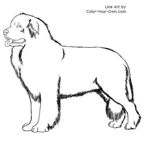 newfoundland dog clipart  clipground