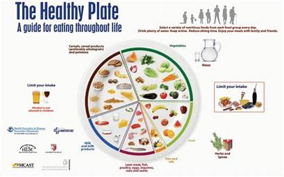 Malta Plate Guide Dietary Guidelines Obesity Reproduced