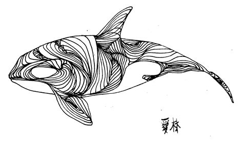 whale drawing images