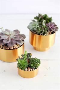Brass Succulent Planter DIY A Beautiful Mess