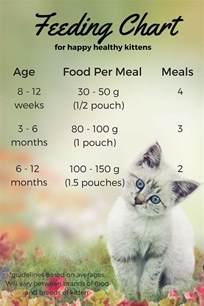 Wet Cat Food Feeding Chart