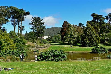 Bontanical Gardens by San Francisco Botanical Garden