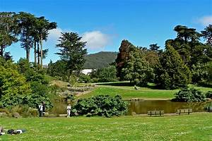 San francisco botanical garden wikipedia for Botanical gardens sf