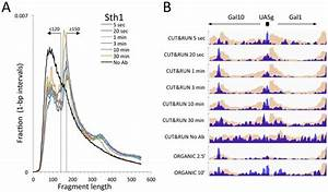 Figures And Data In An Efficient Targeted Nuclease