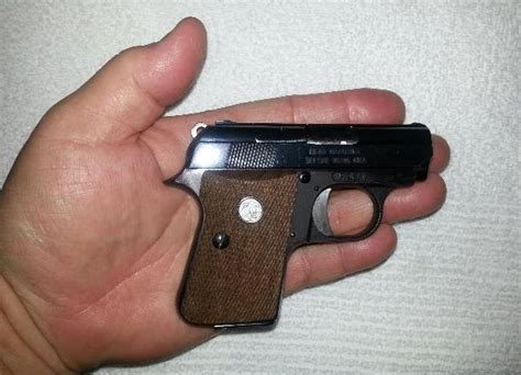 """""""what Is It With The 25 Acp, Anyway?"""" Hellinahandbasketnet"""