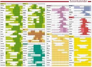 Kartoffel Aussaat Kalender : saisonkalender wissen pinterest saisonkalender gartenkalender und pflanzen ~ Whattoseeinmadrid.com Haus und Dekorationen