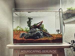 Sauerstoff Im Aquarium : sauerstoff im aquarium o2 f r ein perfekt laufendes aquascape ~ Eleganceandgraceweddings.com Haus und Dekorationen