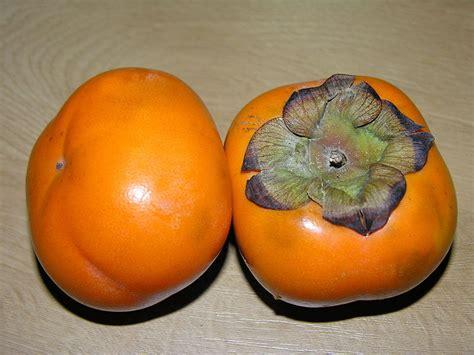 oranje vrucht