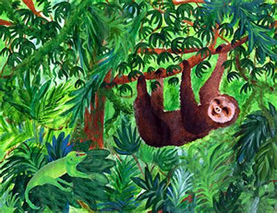 Rainforest Clipart Rainforest Clipart Clipground