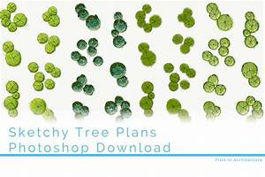Sketchy, Tree, Plans, To, Download, In, Psd, And, Jpeg, Format