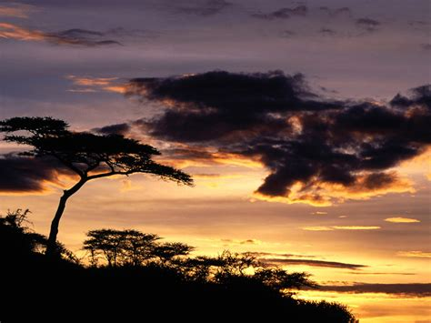 top hdq tanzania images wallpapers  iog collection