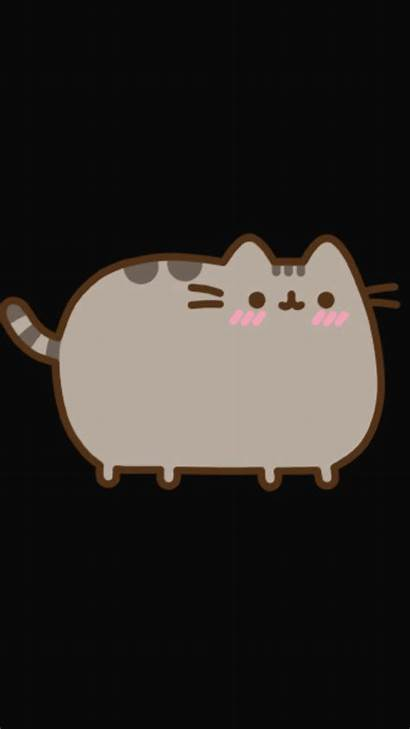Pusheen Cat Wallpapers Chibi Cats Kawaii Drawing
