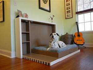 Modern indoor pet room ideas for cat or dog designing a for Dog room furniture