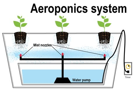 Types Of Hydroponics Systems.