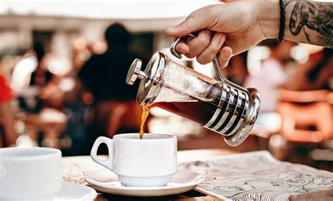 Over time, hard water causes calcium to build up in the machine. 8 Best French Presses Nov. 2020 - Detailed Reviews