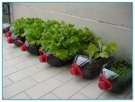 Container Herb Garden Kit