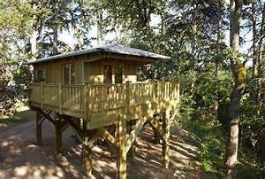 Construire Sa Cabane : construire sa cabane sur pilotis jardin piscine et cabane ~ Melissatoandfro.com Idées de Décoration
