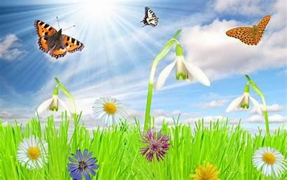 Spring Screensavers Wallpapers Desktop Imgur