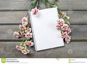 Carnet Page Blanche : page blanche de carnet parmi l 39 oeillet rose image stock ~ Teatrodelosmanantiales.com Idées de Décoration
