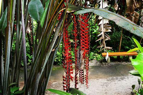 world botanical gardens wikipedia la enciclopedia libre