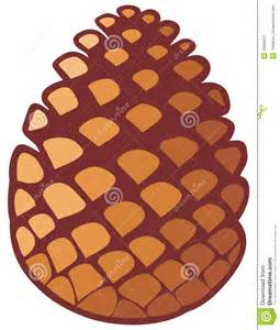 pine cone royalty free stock photography image 33089837