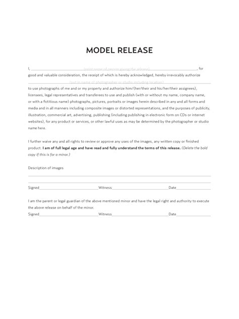 model release form   templates   word excel